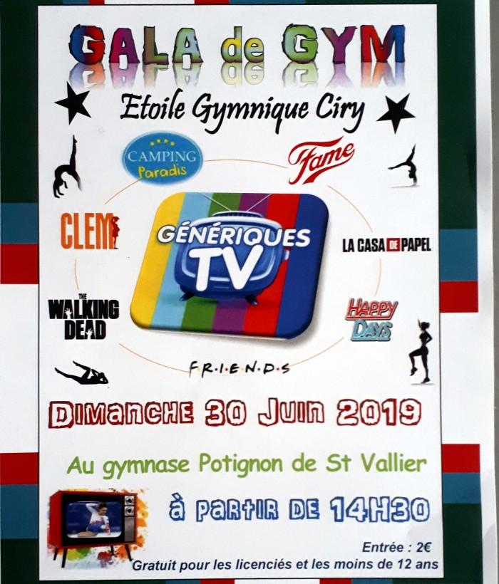 Etoile Gymnique gym gymnastique Ciry noble championnat young filles girls podium Montceau-news.com 14065195