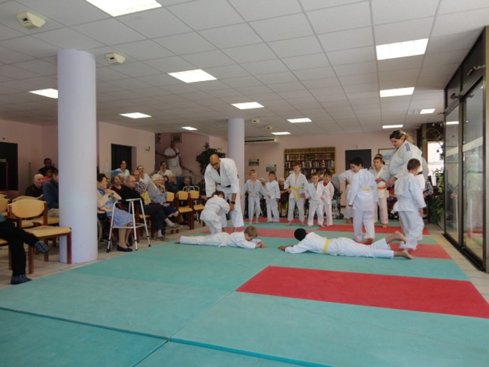 Judo olympiade au Centre Hospitalier La Guiche EHPAD animation compte-rendu site web Montceau-news.com 2106192