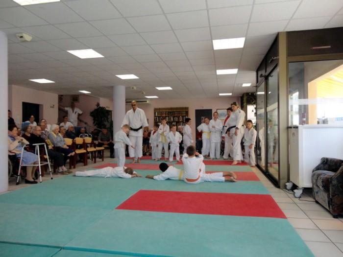 Judo olympiade au Centre Hospitalier La Guiche EHPAD animation compte-rendu site web Montceau-news.com 2106193