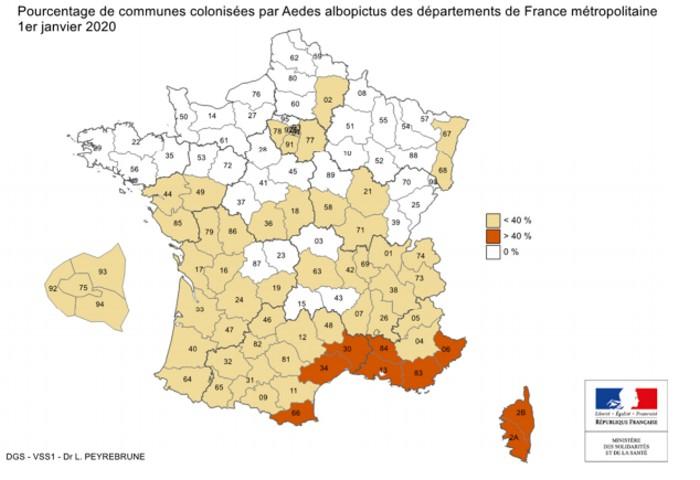 Moustique-tigre : sous surveillance en Bourgogne-Franche-Comté